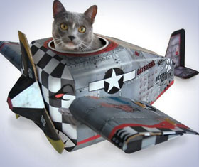 Airplane Cat Playhouse