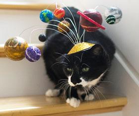 Universe Cat Hat