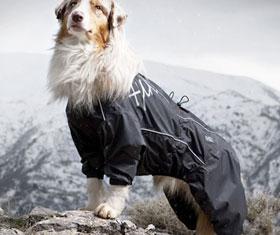 Dog Overalls