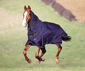 Horse StormBreaker