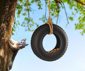 Tire Bird Feeder